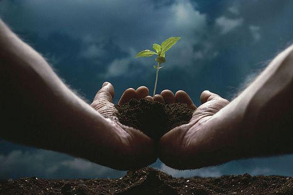 Selamatkan Bumi DenganTanganmu